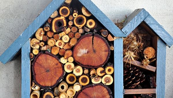 How to create a bug hotel | The perfect hibernation habitat this autumn