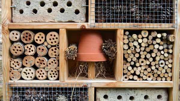 How to create a bug hotel   The perfect hibernation habitat this autumn