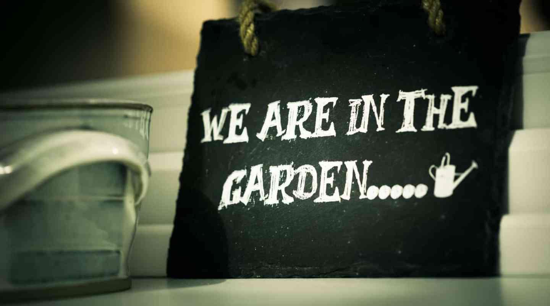 Using Your Garden As A Money Maker