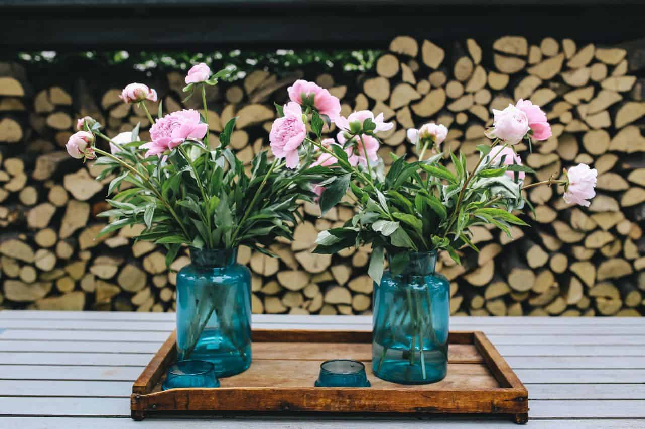 6 Ways To Improve Your Garden With Small Budget