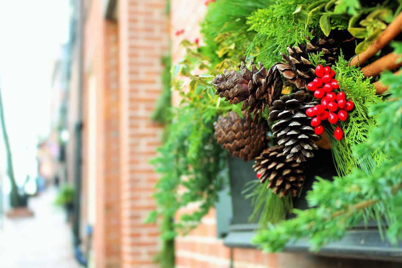 How to create classy Christmas windows