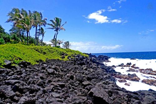 Image result for hawaiian beach