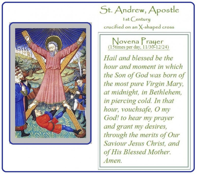 graphic relating to St Andrew Novena Printable identified as Saint Andrew The Apostle Prayers Quotations of the Working day
