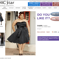 Chic Star Vintage  - A Review