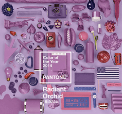 collage radiant orchid