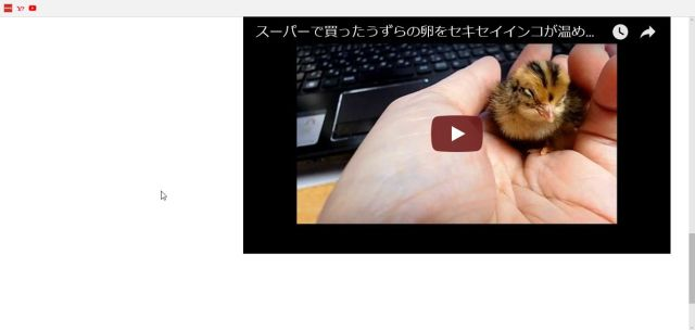 YouTube埋め込み方5