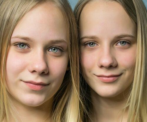 双子 、似ている