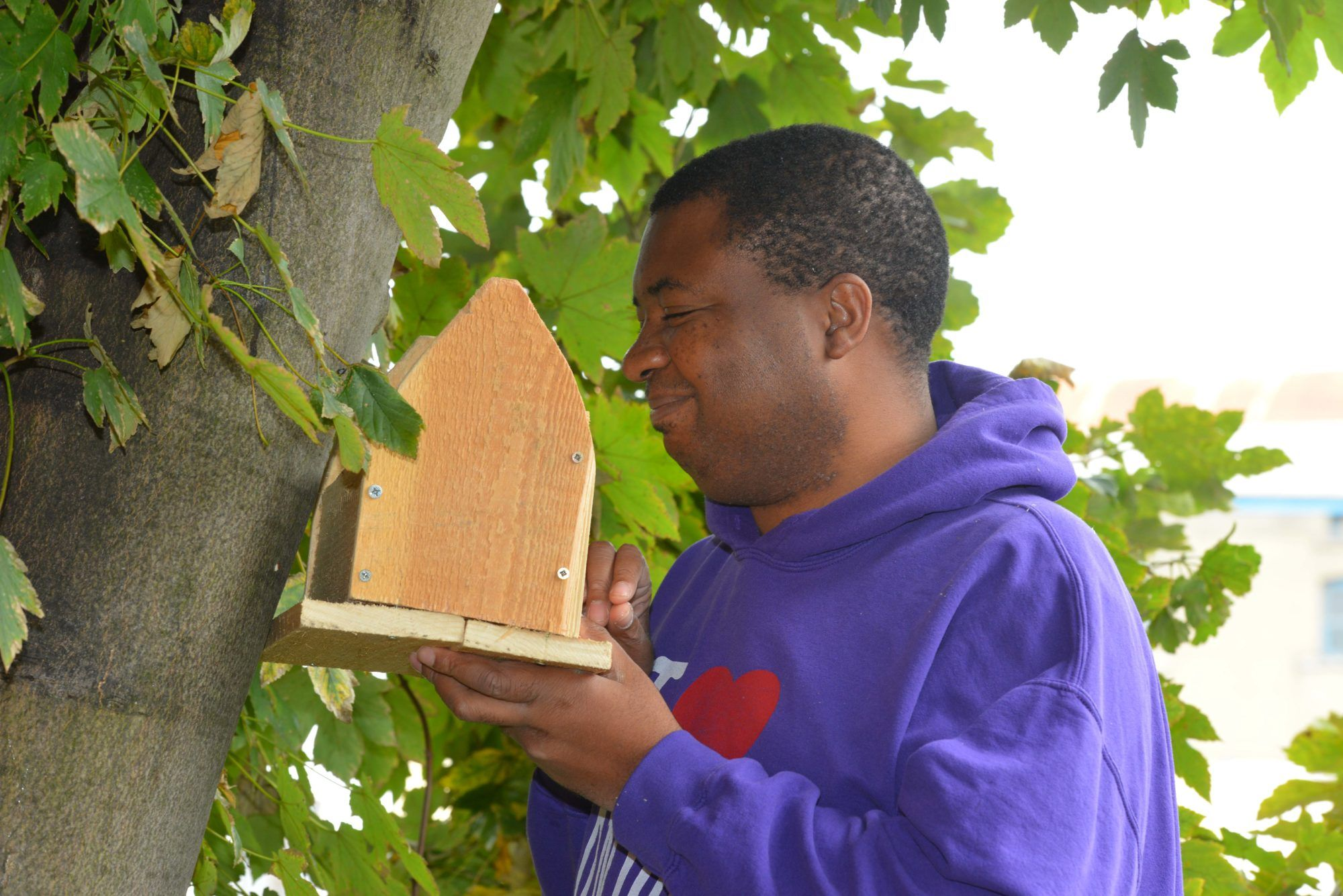 A young man in a purple jumper putting up a bird feeder in a tree
