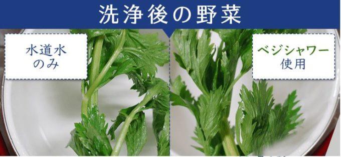 安全に食べたい。野菜の農薬を取り除くベジシャワー