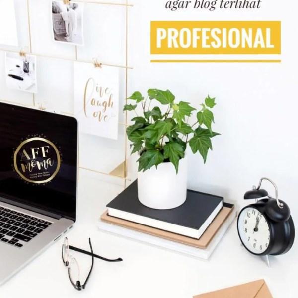 Tips Sederhana Agar Blog Terlihat Profesional