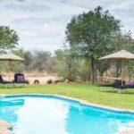 Tamboti Campsite - swimmingpool