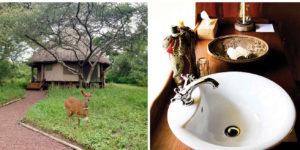 Ndarakwai Ranch - accomodation