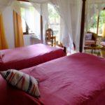 Bougainvillea Safari Lodge - room