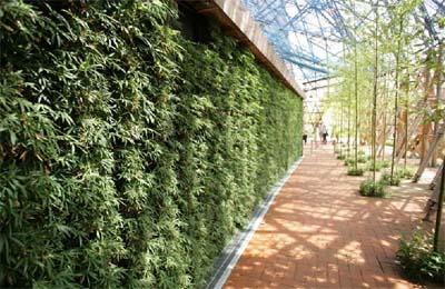 G Sky Green Wall Panels The New American Dream 100k
