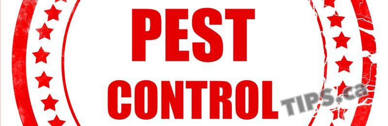 Wildlife Control Tips, Pest Control Tips