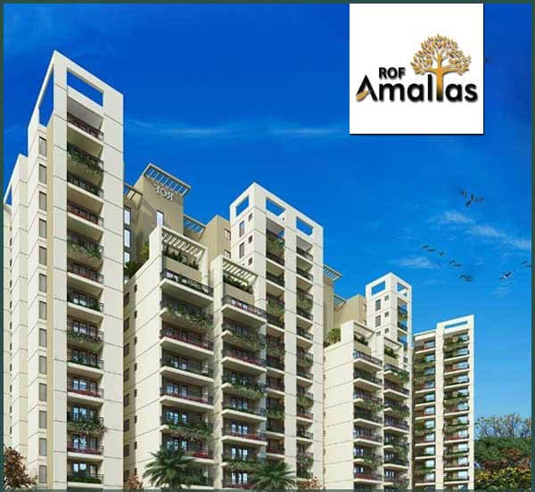 ROF-Amaltas-Gurgaon