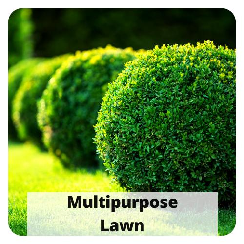 multipurpose lawn