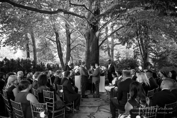 vineyard wedding same sex wedding photography same sex wedding niagara wedding niagara on the lake gay marriage affordable wedding photography