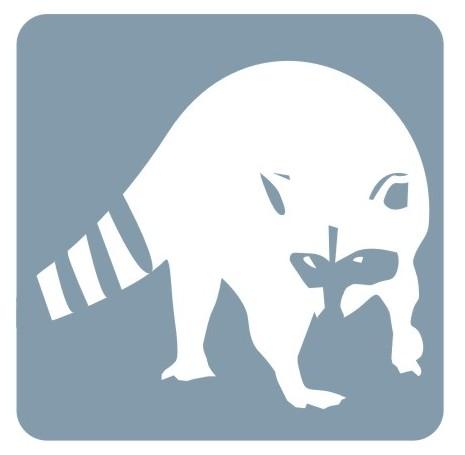 Raccoon Removal Markham
