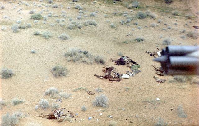 Уничтоженный афганский караван