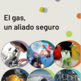 El-Gas-Un-Aliado-Seguro-2019-04-04 a las 20.12.49