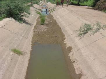 This irrigation canal used to run full until the state of Sonora started diverting the waters of the Rio Yaqui to supply a NAFTA industrial zone in the city of Hermosillo.