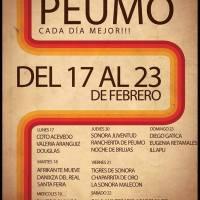 PEUMO: DEL LUNES 17 AL DOMINGO 23 DE FEBRERO DE 2014 - CARNAVAL PEUMO CADA DÍA MEJOR!!!
