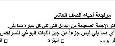 Photo of مراجعة مع الحل أحياء للصف العاشر العام فصل أول