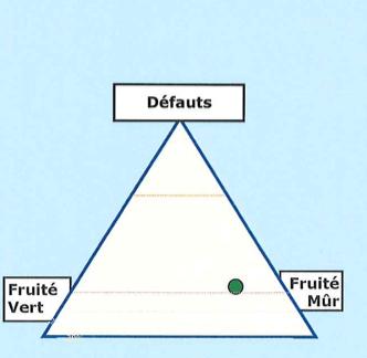 Triangle_FM