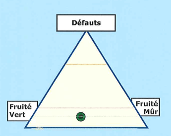 Triangle_FV-FM