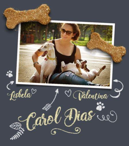 biscoitos para cachorro simples
