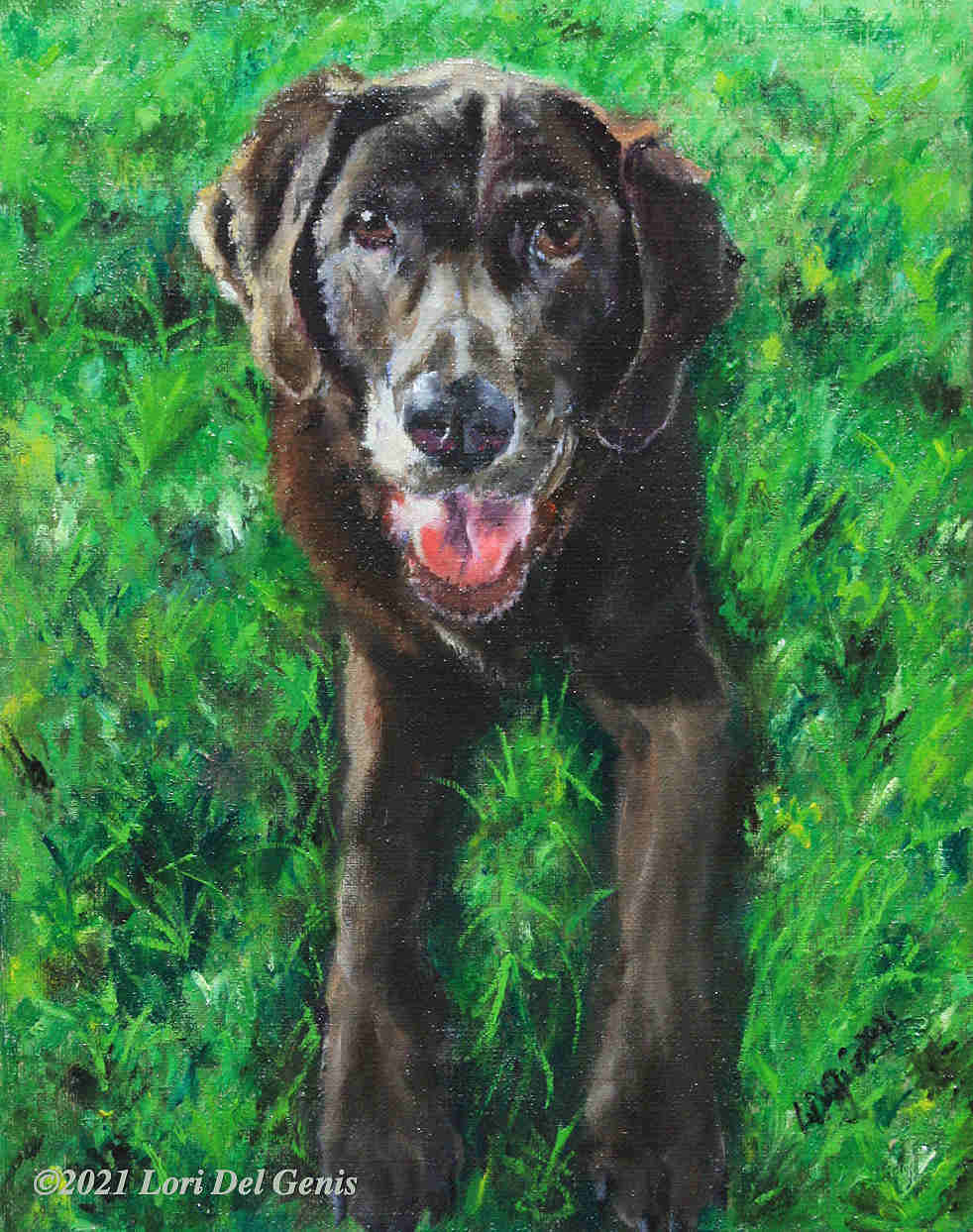 'Bella' is an oil painting of a chocolate lab commissioned as a donation to the Wakefield Food Pantry. (Lori Del Genis, 2021)