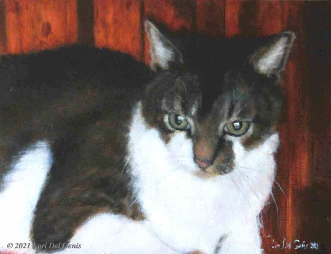 'Henry', commissioned oil painting of a grey and white cat by Lori Del Genis