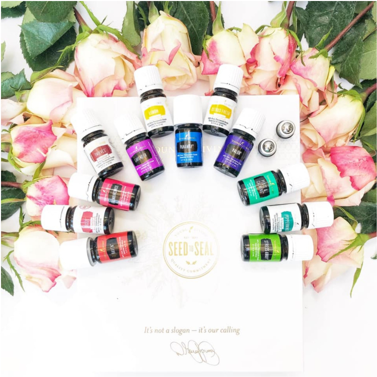 Essential oil premium starter kit diffuser blends from the Young Living premium starter kit that will keep your home smelling amazing all year long.