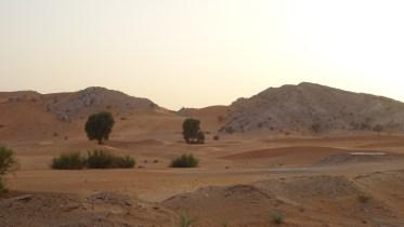 Du sable et des dunes