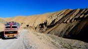 Ladakhi Beauties