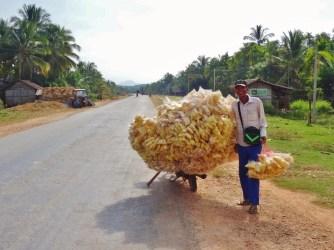 Vendeur de chips ambulant