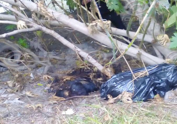 Los cuerpos llevaban más de una semana en el sitio.