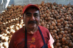 El señor ocupa más de mil cocos a día.