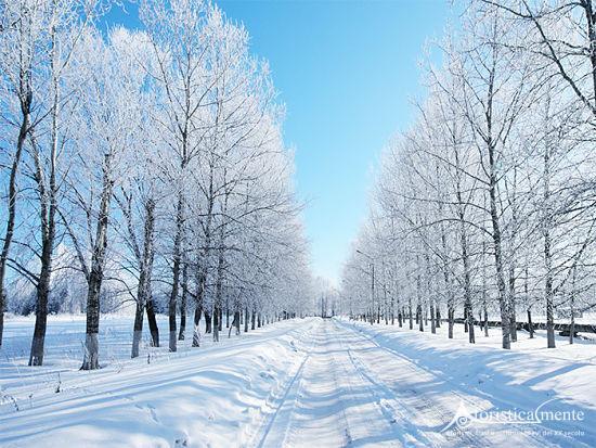 Risultati immagini per inverno