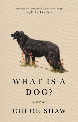 what is a dog
