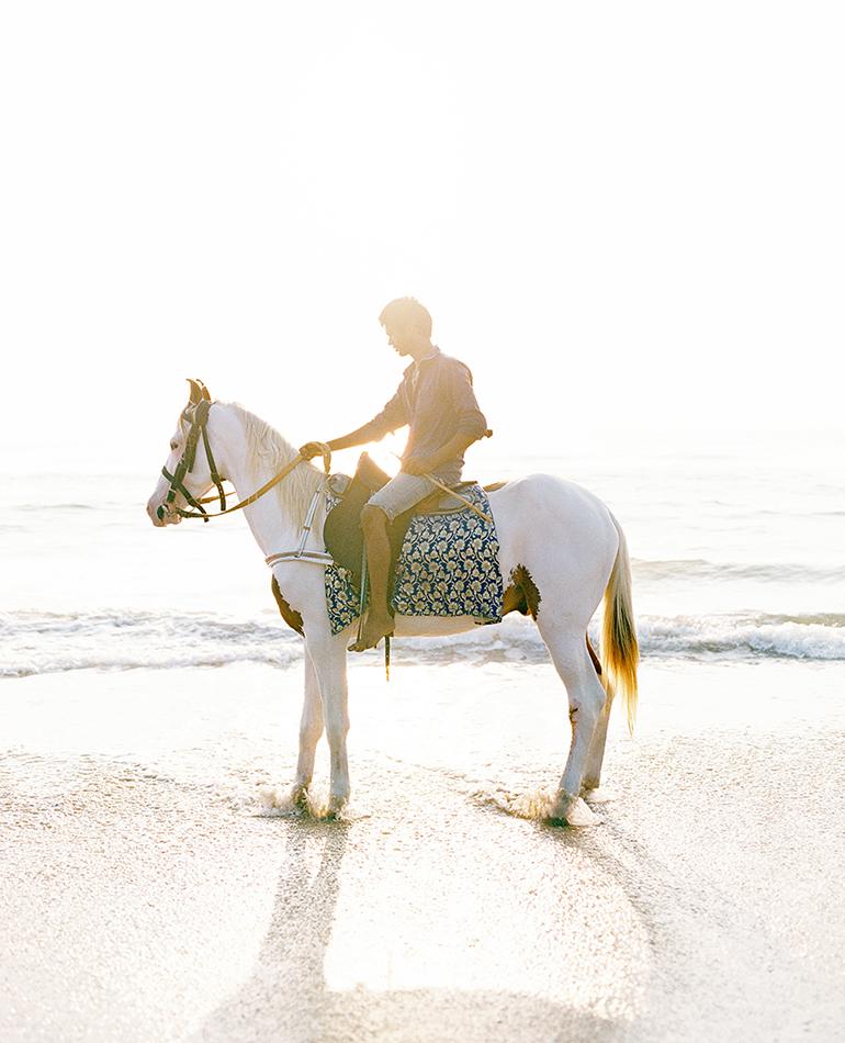 Elliots Beach Horse