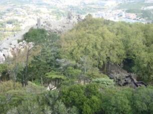 Castle Moors Inside from Top