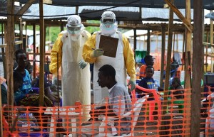 Ebola outbreaks in Guinea, DR Congo have sparked new fears in Africa