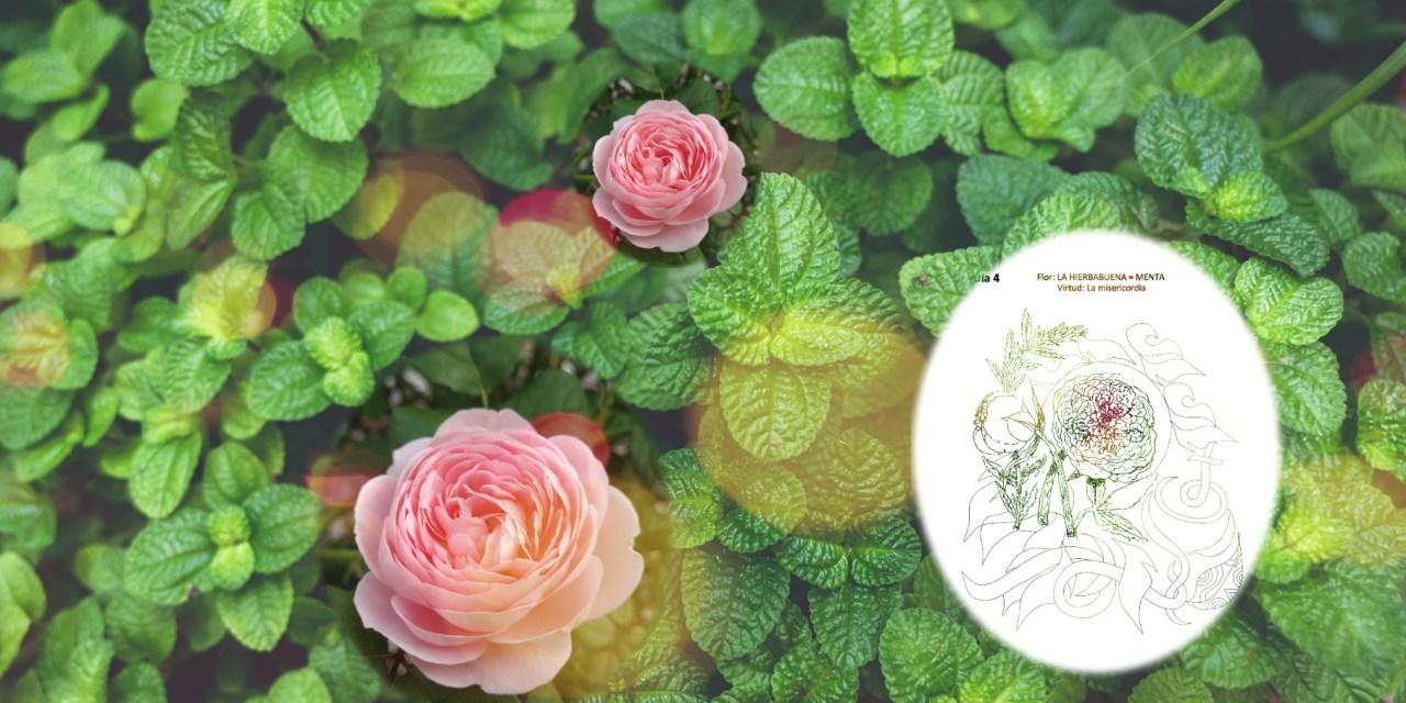 MOIS DE MARIE:  4E JOUR. HERBEBONNE ET LA ROSE SANS ODEUR. MISERICORDE
