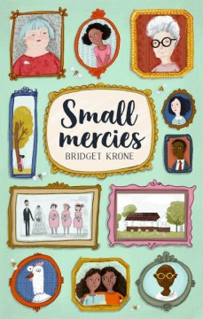 Small Mercies Book Cover