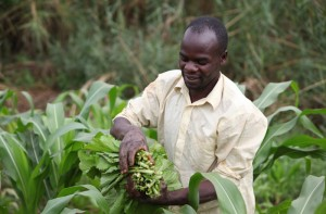 The agricultural sector is expected to benefit from increased resource allocation