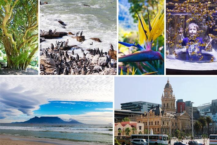 Africa Elite Travel ─ Cape Town