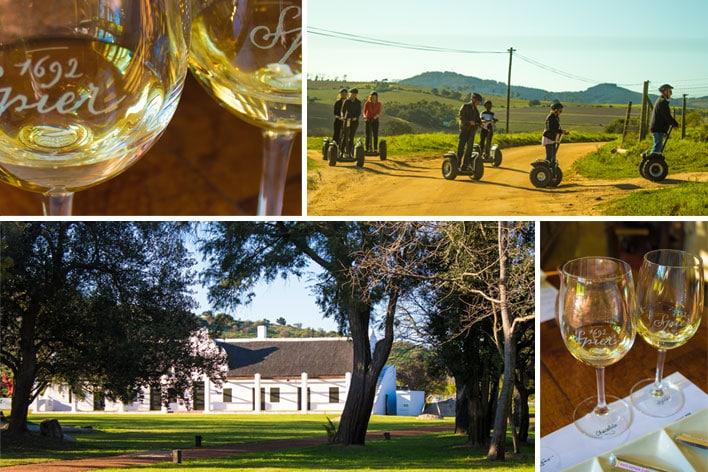 Africa Elite Travel ─ Cape Winelands