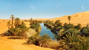 Oasis in the middle of the Sahara desert